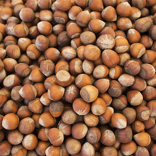 Nuts-4