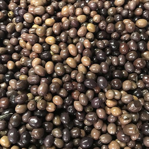 Italian Gaeta Olives
