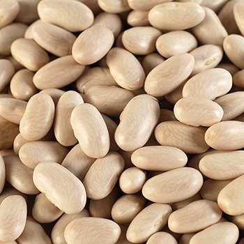 Great-Northern-Beans